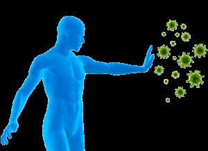 immunity---baobab---life-powder