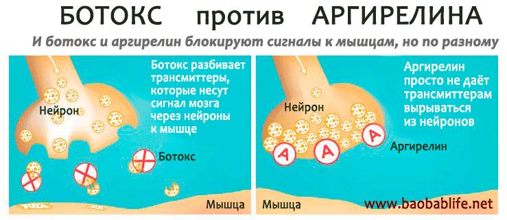 botox-vs-argireline.