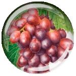 Косточки винограда сорта Vitis Vinifera - ингредиент Reserve от Jeunesse
