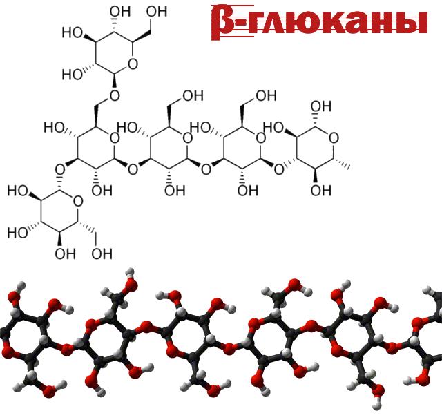 Бета-глюканы рисунок png без фона