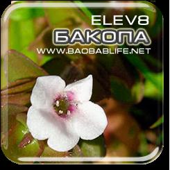 Бакопа Монье - ингредиент Elev8