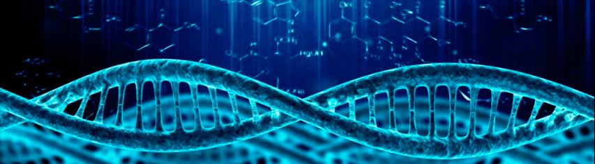 dna telomere ta65