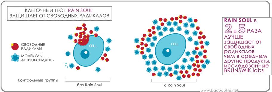 Тест Rain Soul на антиоксидантную активность