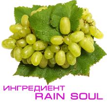 Семечки винограда Шардоне - ингредиент Rain Soul