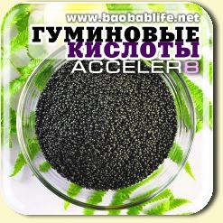 Гуминовые кислоты - ингредиент Acceler8
